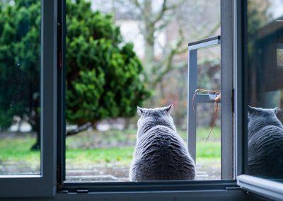french-casement-windows-gallery-4